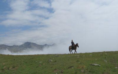 Pferdetrekking im Osten Georgiens